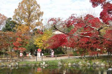 丸山公園の紅葉